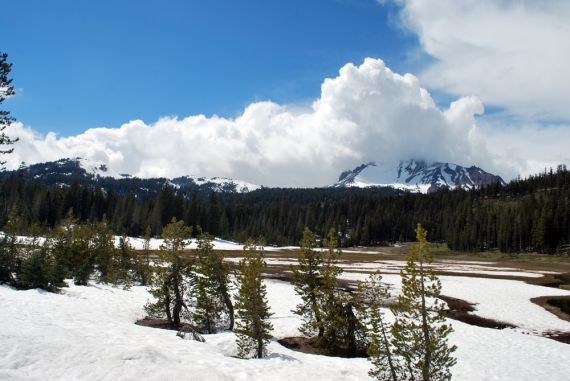 snow covered lassen meadows